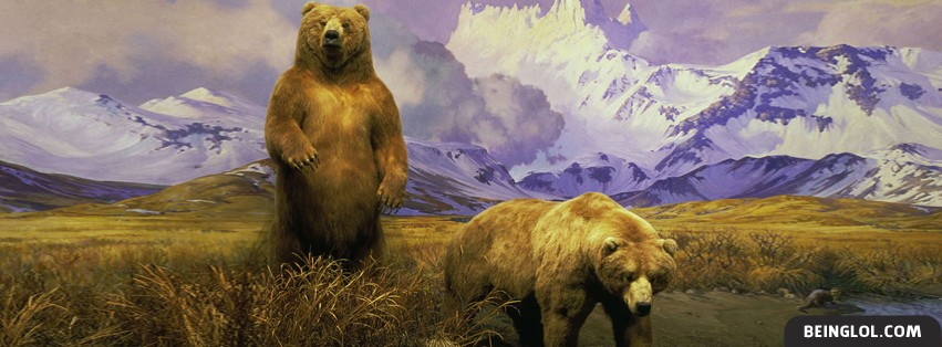 Alaskan Brown Bear Facebook Cover
