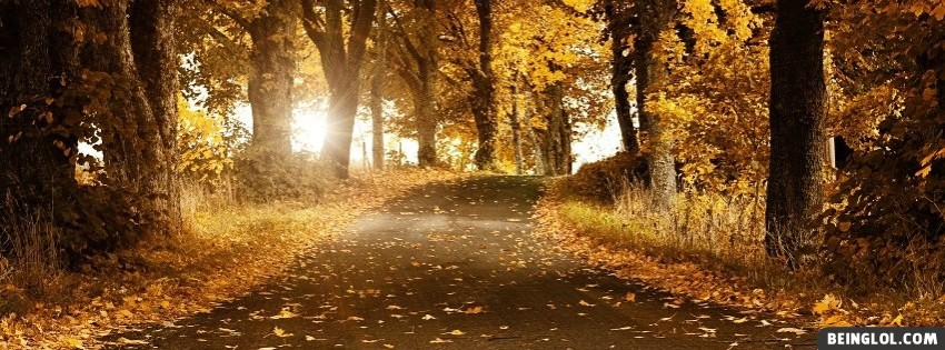 Autumn Forest Facebook Cover