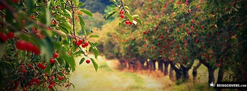 Awesome Cherry Farm Facebook Cover