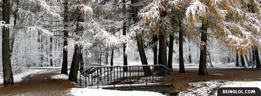 Beautiful Winter Snowy Forest 2 Facebook Cover