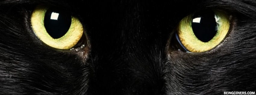 Black Cat Eyes Facebook Cover