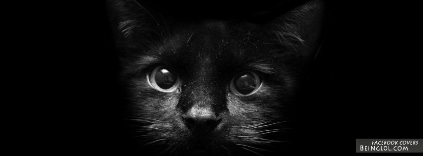 Black Cat Facebook Cover