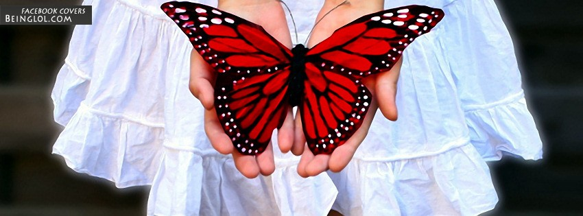 Butterfly Facebook Cover