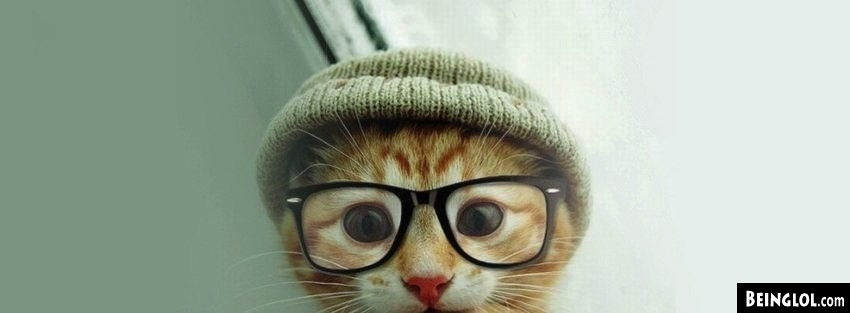 Cat Hat Glasses Facebook Cover
