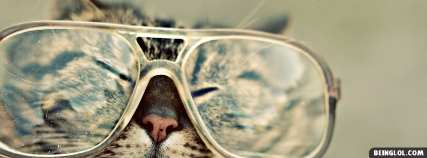Cat Sunglasses Facebook Cover