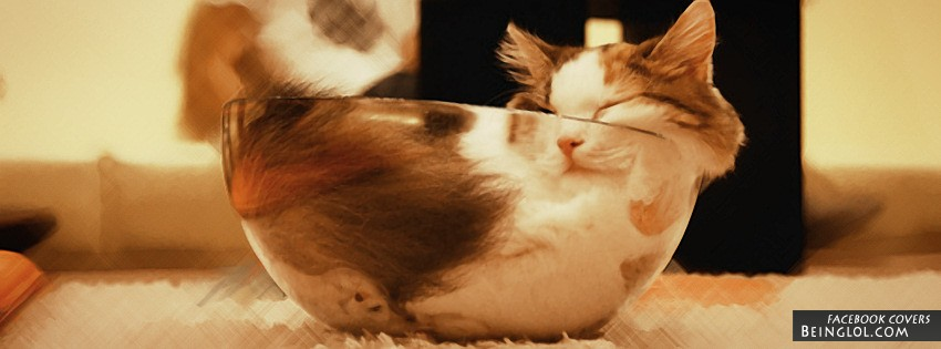 Cute Cat Facebook Cover