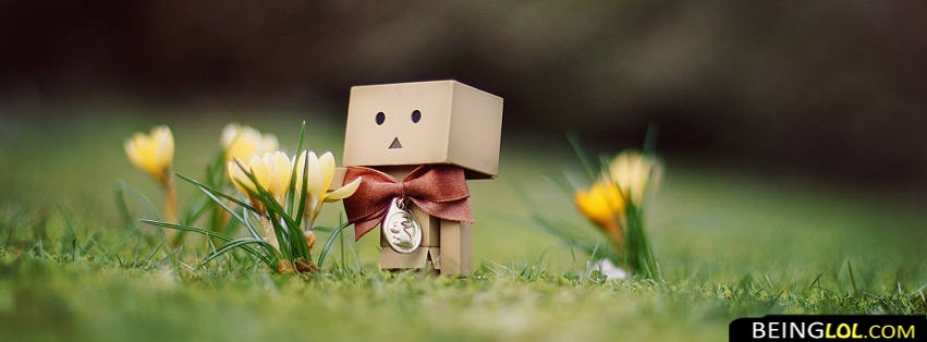 Danbo With Flower Facebook Cover
