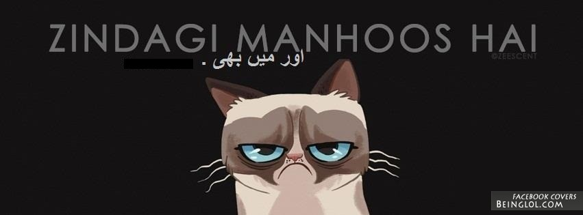 Desi Grumpy Cat Facebook Cover