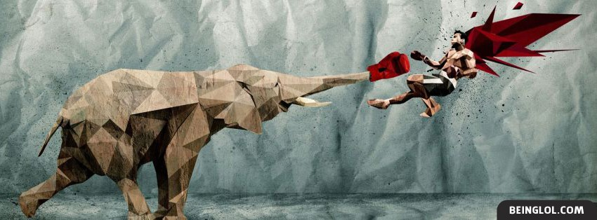 Elephant Punch Facebook Cover