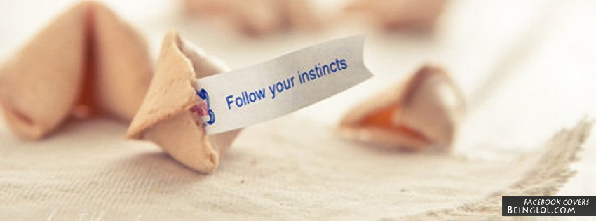 Follow Your Instincts Facebook Cover