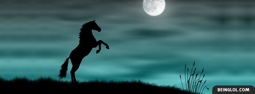 Horse In The Moonlight Facebook Cover