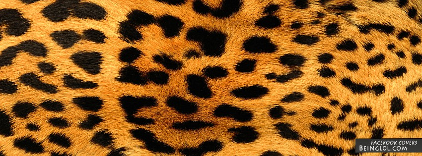 Leopard Print Cover