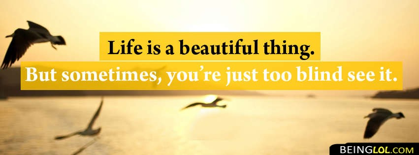 Life Is A Beautiful Thing Facebook Cover