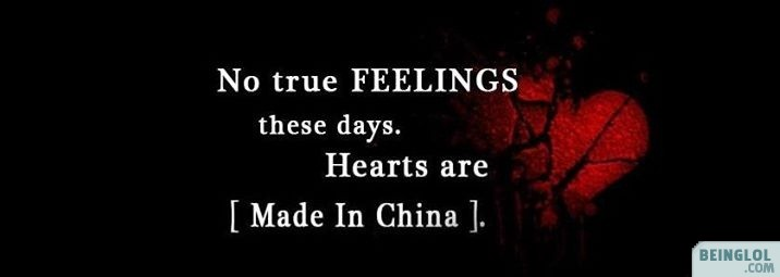 No True Feelings Facebook Cover