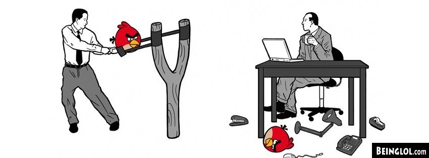 Office Angry Birds  Facebook Cover