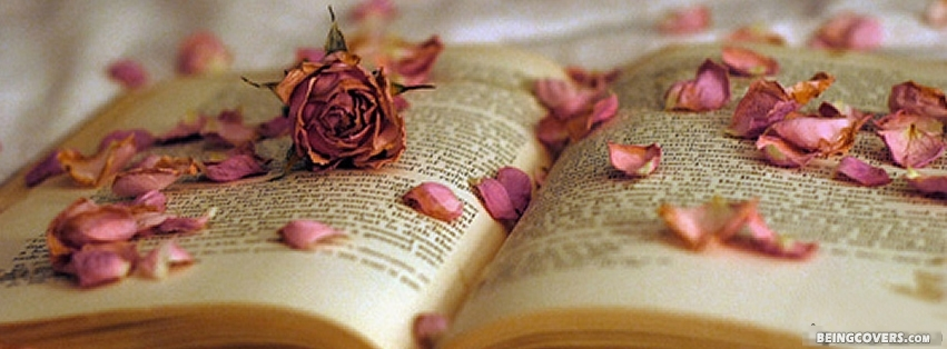 Old Rose Petals On A Book Facebook Cover
