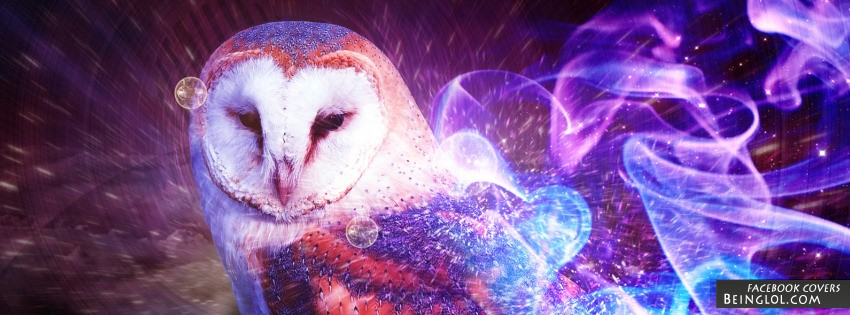 Owl Abstract Art Facebook Cover