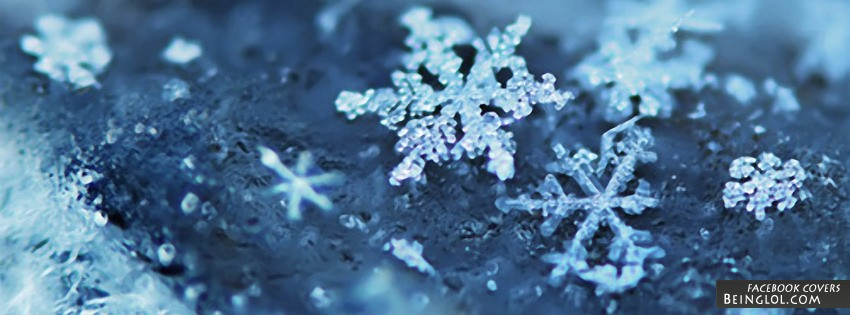Pretty Snow Flakes Facebook Cover