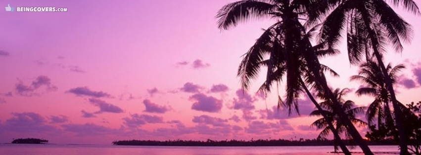Purple Sky Palm Trees Facebook Cover