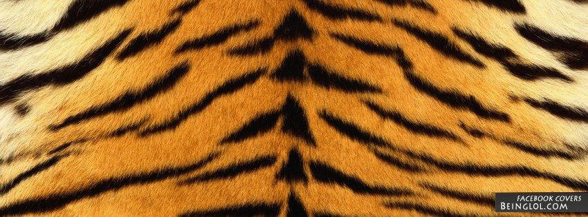 Tiger Print Facebook Cover