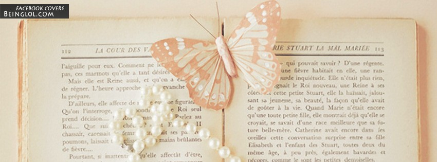 Vintage Butterfly Facebook Cover