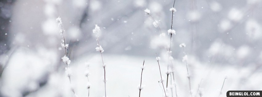 Winter Facebook Cover