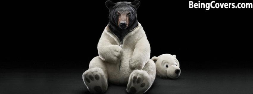 Brown bear in the polar Cover