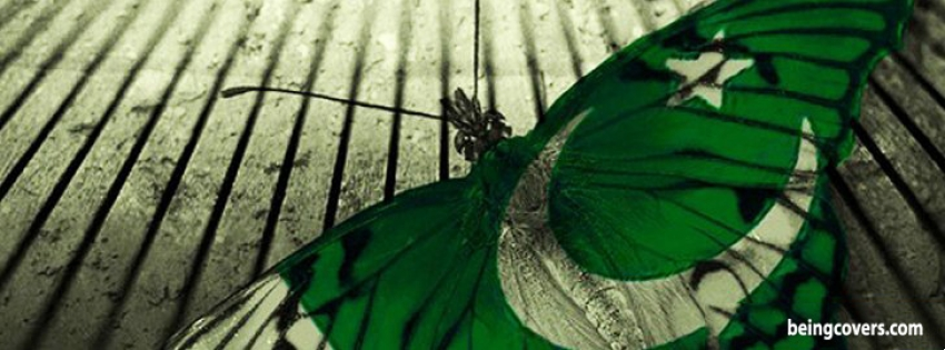 Butterfly Pakistan Flag Facebook Cover