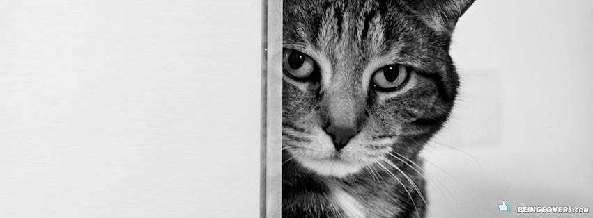 Cat Hiding Behind Door Black And White Facebook Cover