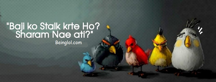 Funny Urdu Angry Birds Facebook Cover