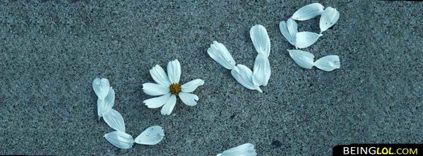 Love Flower Facebook Cover Facebook Cover