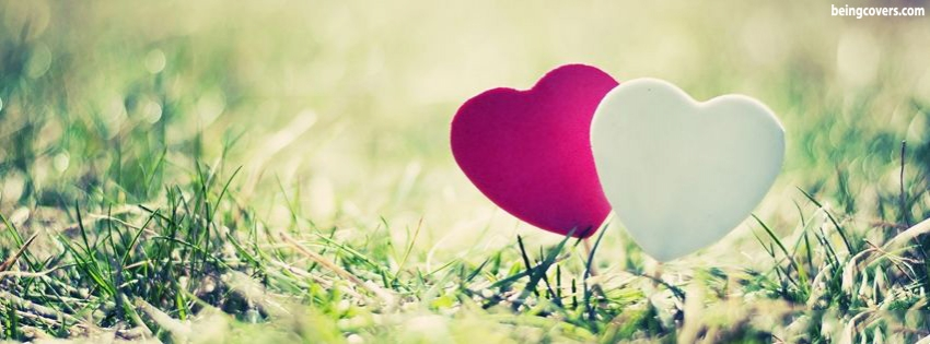 Lovely Hearts Facebook Cover