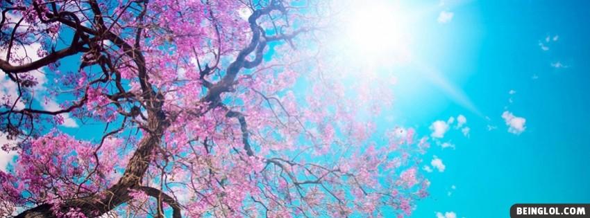 Spring Sunshine Facebook Cover